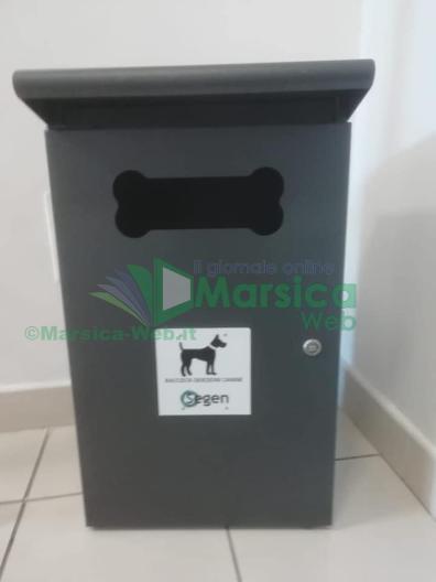 DOG_STATION_LUCO_DEI_MARSI