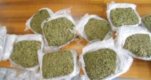 sequestro droga paola