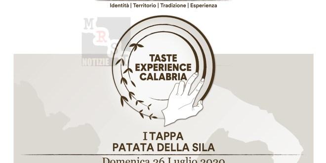Viaggio nella Calabria a Km 0