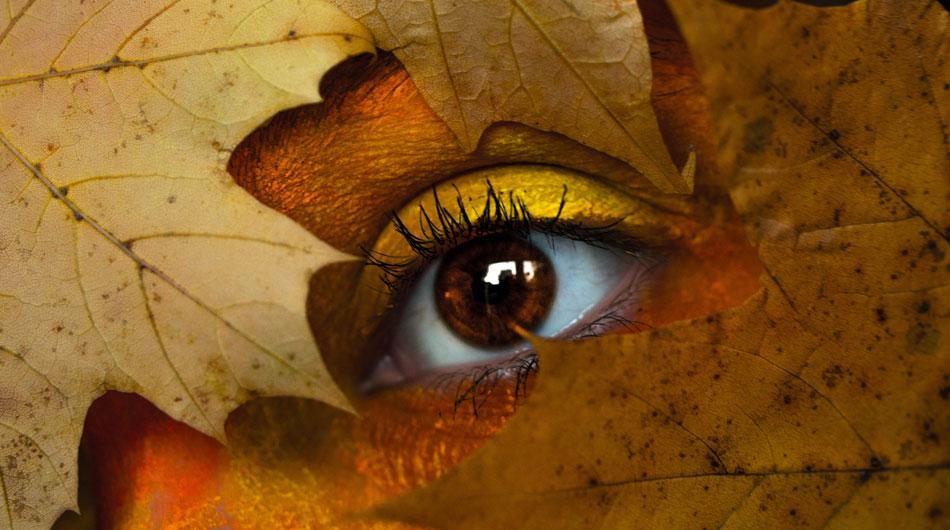 plant eye