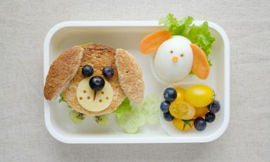 bento hond lunch