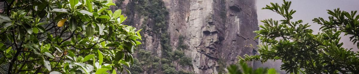Ranní pochod džunglí k nejvyššímu vodopádu světa (Mart Eslem)Ranní pochod džunglí k nejvyššímu vodopádu světa (Mart Eslem)