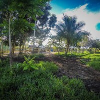 Zastrčený ranč v Sierra Imataca ve Venezuele (Mart Eslem)