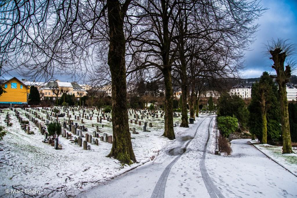 hřbitov Commonwealth War Graves Møllendal v Bergenu (Mart Eslem)