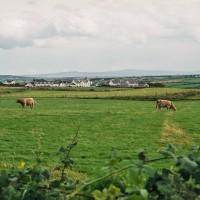 Irský venkov (Mart Eslem)