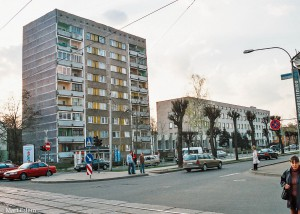 Šedivý litevský Daugavpils (Mart Eslem)