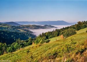 Karpatské stráně zahalené ranní mlhou (Mart Eslem)