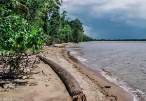 Liduprázdné pláže Francouzské Guyany (Mart Eslem)