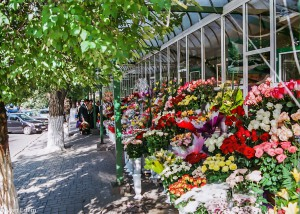 Květinový trh v Kišiněvě (Mart Eslem)