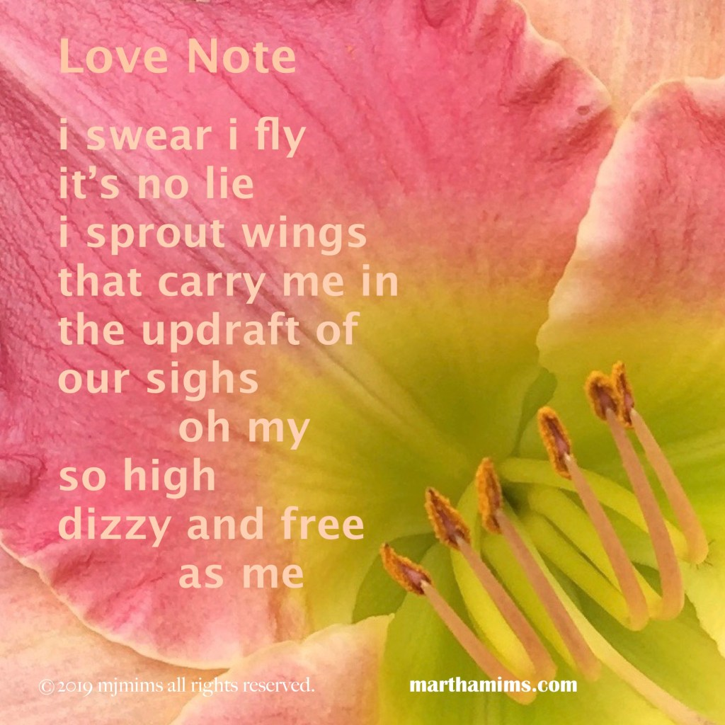 i swear i fly it's no lie i sprout wings that carry me in the updraft of  our sighs 		oh my so high dizzy and free 		as me