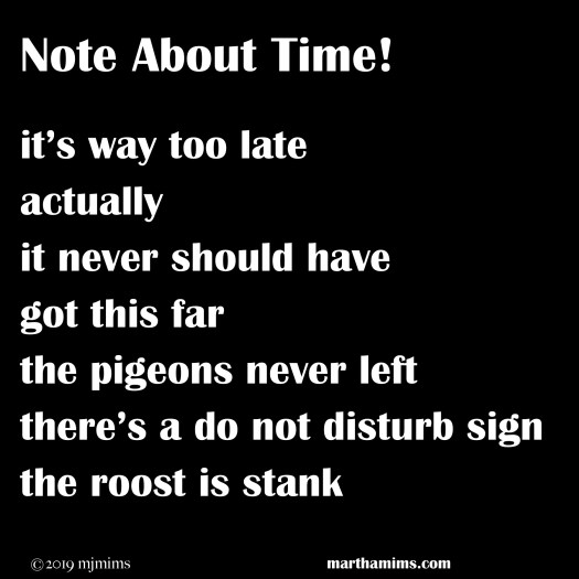 it's way too late actually it never should have got this far the pigeons never left there's a do not disturb sign the roost is stank