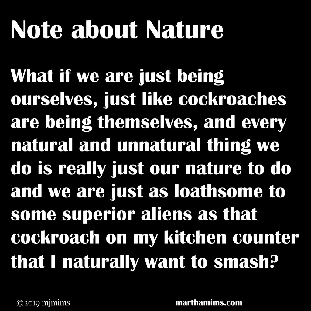 What if we are just being ourselves, just like cockroaches are being themselves, and every natural and unnatural thing we do is really just our nature to do and we are just as loathsome to some superior aliens as that cockroach on my kitchen counter that I naturally want to smash?