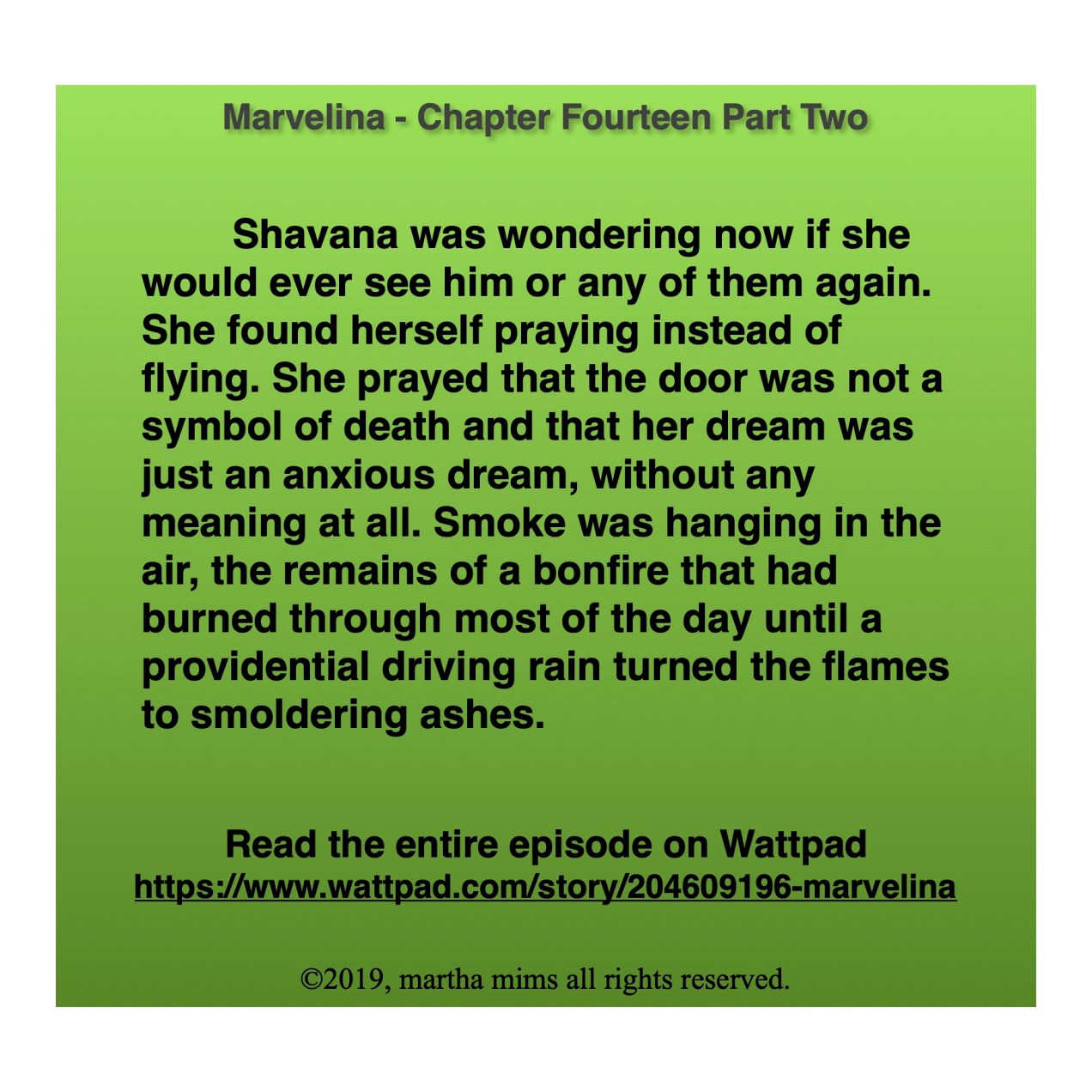 Shavana was wondering now if she would ever see him or any of them again. She found herself praying instead of flying. She prayed that the door was not a symbol of death and that her dream was just an anxious dream, without any meaning at all. Smoke was hanging in the air, the remains of a bonfire that had burned through most of the day until a providential driving rain turned the flames to smoldering ashes.