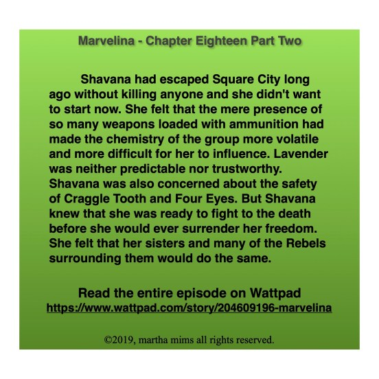 Shavana had escaped Square City long ago without killing anyone and she didn't want to start now. She felt that the mere presence of so many weapons loaded with ammunition had made the chemistry of the group more volatile and more difficult for her to influence. Lavender was neither predictable nor trustworthy. Shavana was also concerned about the safety of Craggle Tooth and Four Eyes. But Shavana knew that she was ready to fight to the death before she would ever surrender her freedom. She felt that her sisters and many of the Rebels surrounding them would do the same.