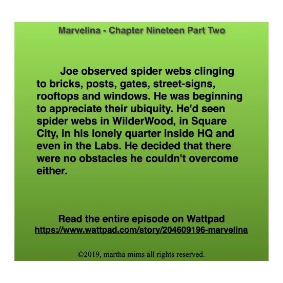 Joe observed spider webs clinging to bricks, posts, gates, street-signs, rooftops and windows. He was beginning to appreciate their ubiquity. He'd seen spider webs in WilderWood, in Square City, in his lonely quarter inside HQ and even in the Labs. He decided that there were no obstacles he couldn't overcome either.