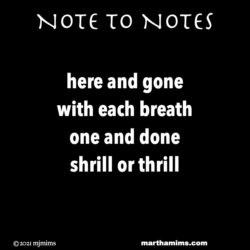 Note to Notes   here and gone with each breath one and done shrill or thrill
