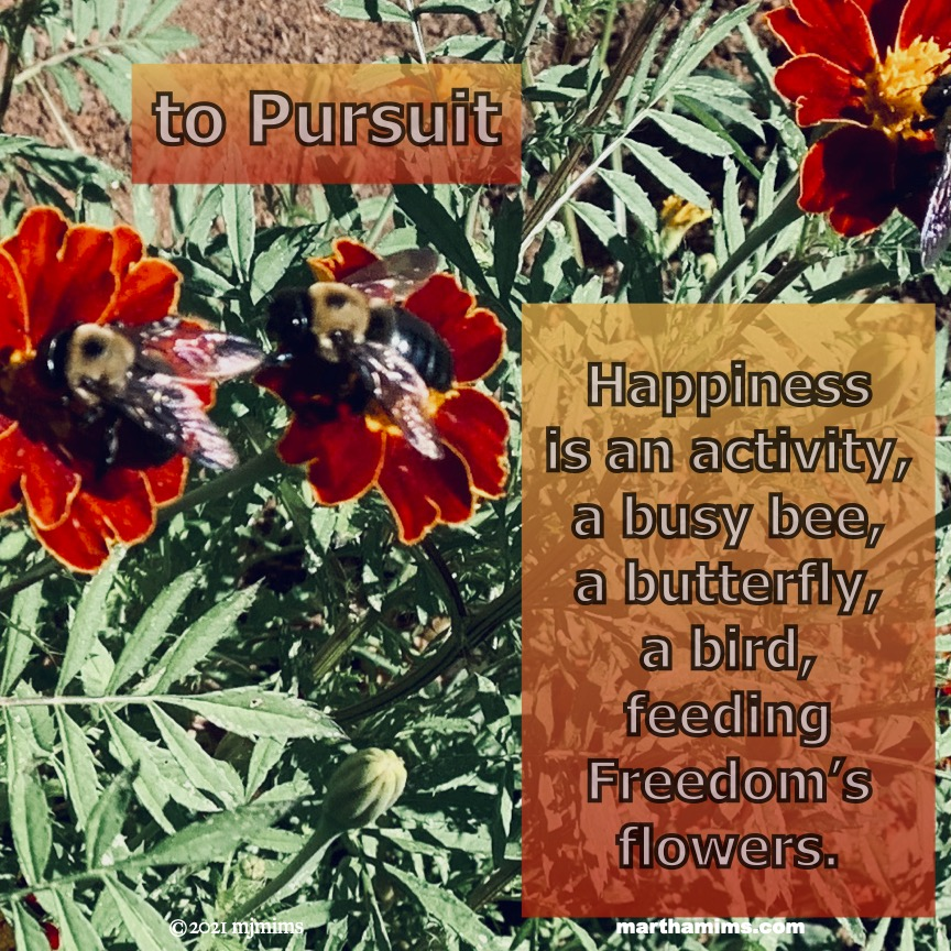 to Pursuit  Happiness  is an activity,  a busy bee,  a butterfly,  a bird,  feeding Freedom's flowers.