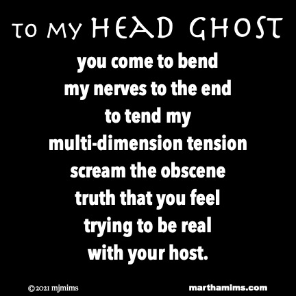 to my Head Ghost  you come to bend  my nerves to the end to tend my  multi-dimension tension scream the obscene truth that you feel trying to be real with your host.
