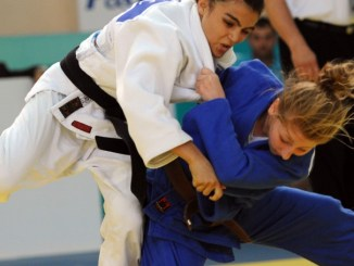 Injuries in martial arts competition