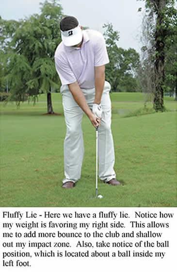 FO-Fluffy