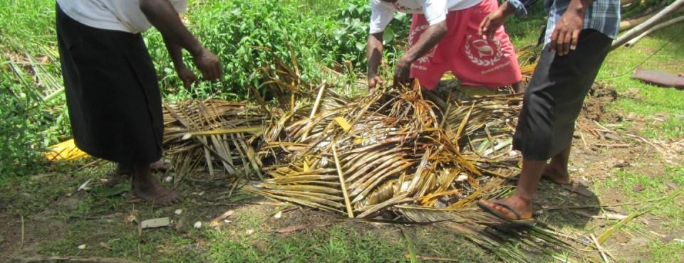 Village life in Fiji