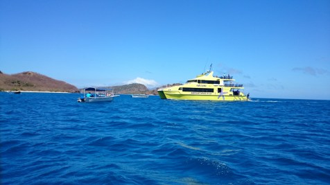 The Awesome Adventures Yasawa Flyerbeing greeted by a water taxi