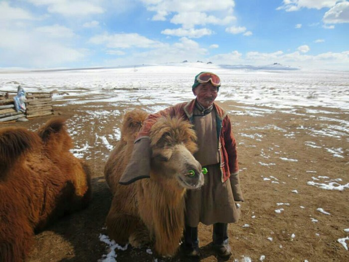 The master with his camels