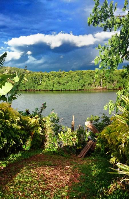 The Dreketi River, Fiji's deepest river, in Vanua Levu.