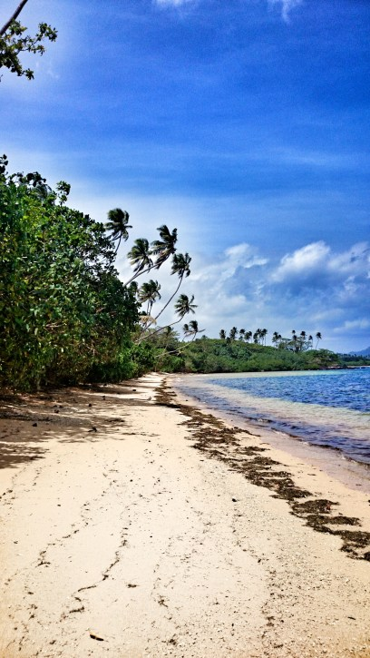 A gorgeous beach in Taveuni