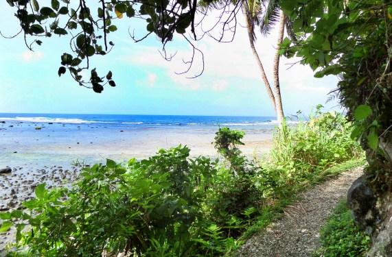 Near the beginning of the Lavena Coastal Walk