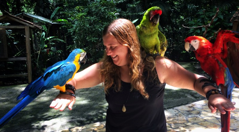 Hanging out with these stunners at Macaw Mountain, Honduras