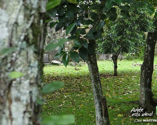 verde-martinato-reserva-sao-vedelino