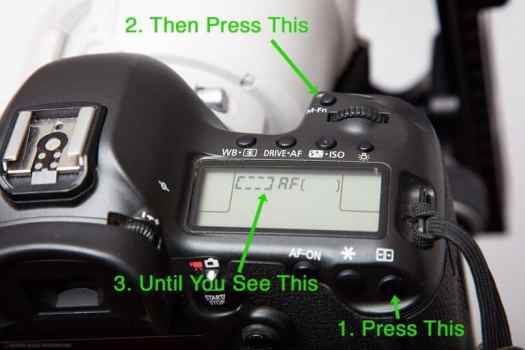Using All 61 AF Points on the Canon 5Ds R