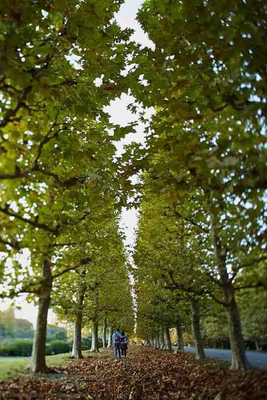 Couple Walking Between Trees