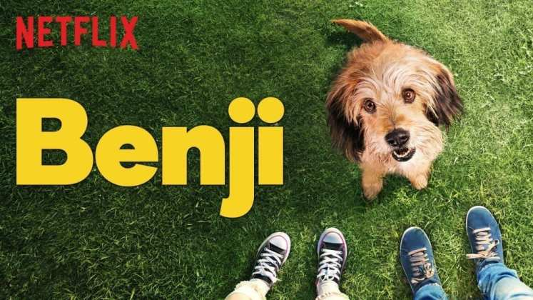 "Image from the movie ""Benji"""