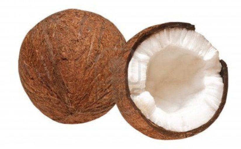 I dag købte jeg en kokosnød