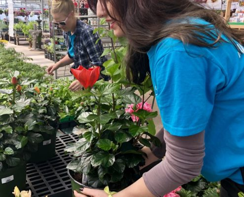 Employees arranging plants - Martin's Home & Garden - Murfreesboro, TN