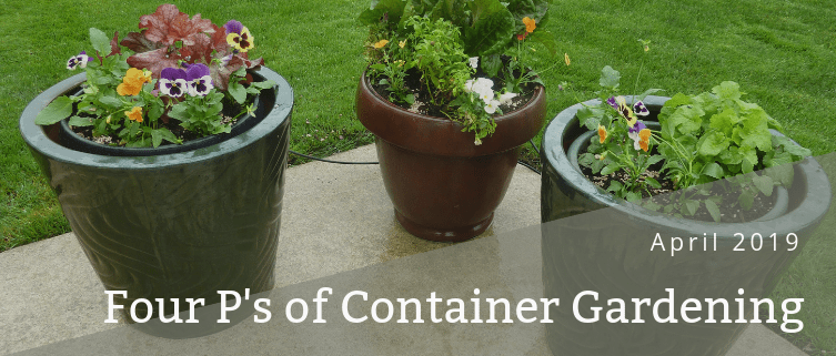 Four P's of Container Gardening - Blog post header - April 2019 - Martin's Home & Garden - Murfreesboro TN