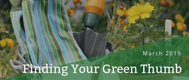 Finding Your Green Thumb - Blog post header - March 2019 - Martin's Home & Garden - Murfreesboro TN