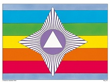 Sagens flag
