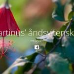 Nye norske hjemmesider om Martinus
