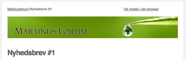 Martinusforum-nyhedsbrev-1.2
