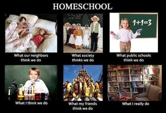 what homeschool families do