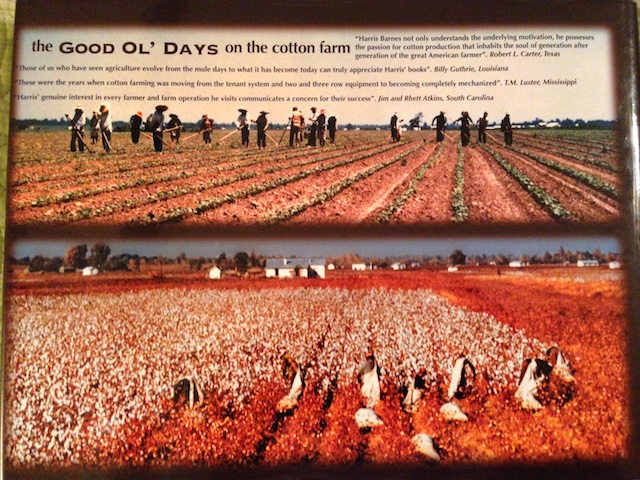 The back cover shows folks in fields picking cotton.
