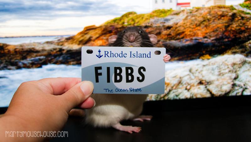 Fibbs_RI