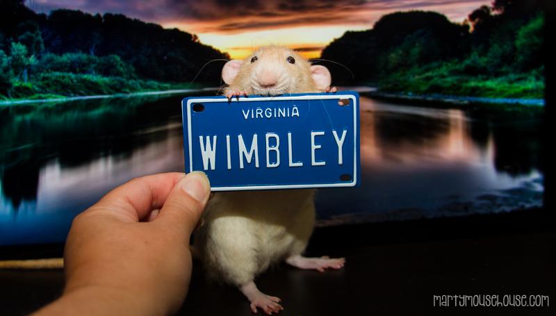 wimbley_va