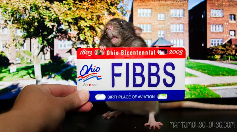 fibbs_OH
