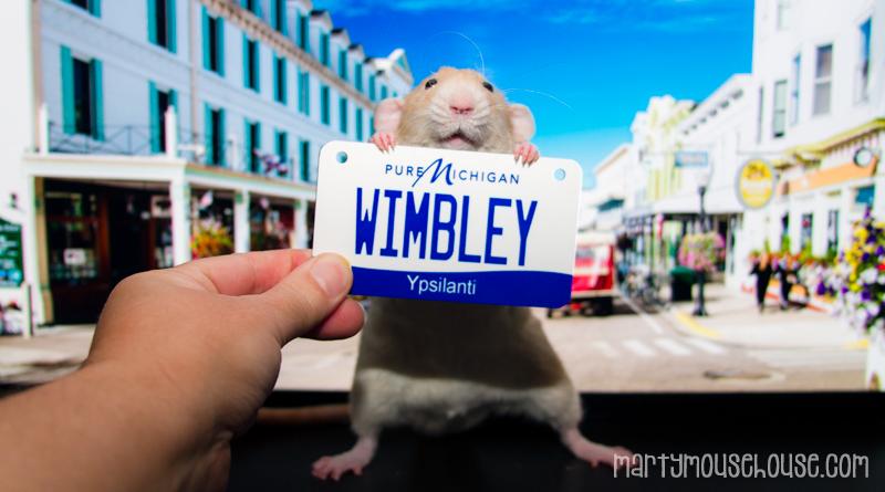 MI_wimbley