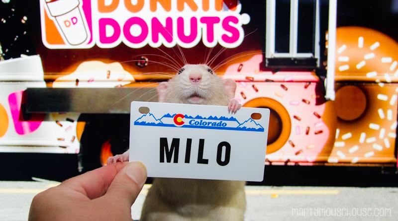 CO_milo