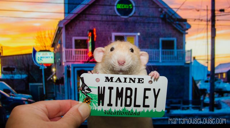 ME_wimbley